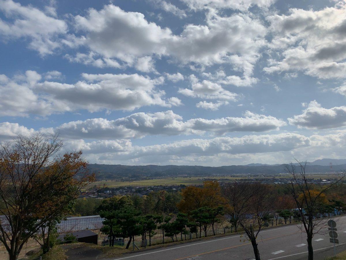 ドッグランスペースから見る柏崎市